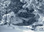 40194303.snowscene