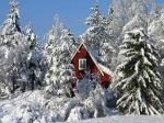 443900-1024x768-winter