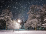 541455-1024x768-Winter_Park_At_Night