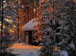 842837-1024x768-winter-sunrise