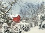 In-seed-time-learn-in-harvest-teach-in-Winter-enjoy