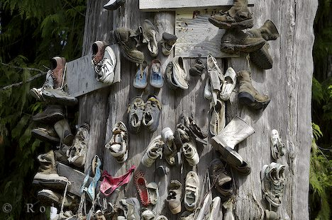 shoe-tree-exhibit_10141