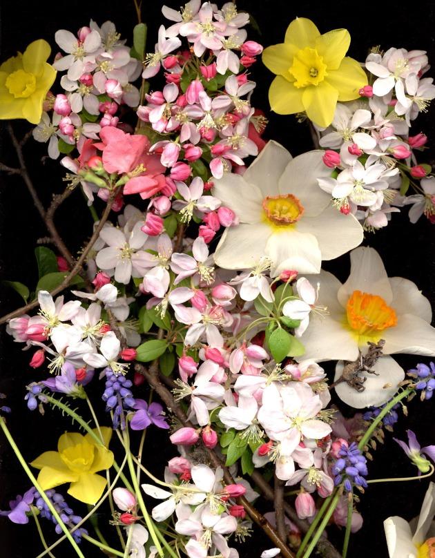 spring_bouquet