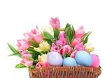 easter-egg-tulips