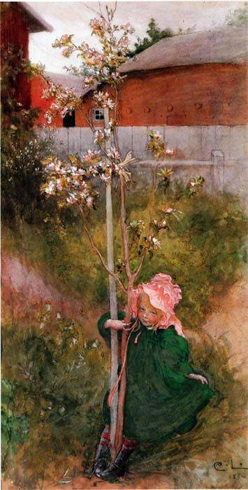 Carl Larsson - Apple Blossom