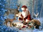 19-529912-1024x768-santa-nature