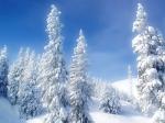 20740-1024x768-Winter_Wonderland_1920
