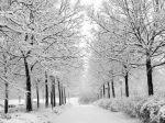 257920-1024x768-Earth-Winter-75608