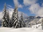 289377-1024x768-fresh-snow