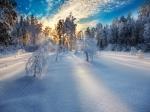 499907-1024x768-winter