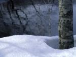 _nature-wallpaper-snow-winter-scene-2