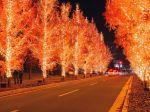 wallcoo.com_Christmas_wallpaper_christmas_Night_view_113