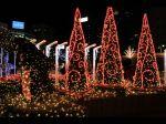 wallcoo.com_Christmas_wallpaper_christmas_Night_view_13