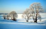 [wallcoo_com]_winter_Travel_winter_008