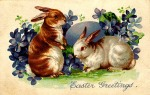 easter-bunny-picture-2