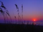 270317-1024x768-Myrtle_Beach_Sunrise1