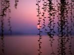 402742-1024x768-Sundown-African-Sunset
