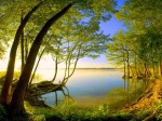 693527-1024x768-138_size_1600x900_beautiful-nature-1920-1080-5151