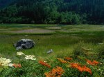 Amazing_Landscape_in_China_0867