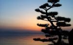 biwako-sunset-wallpapers_13709_1280x800