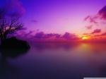 maldivian_sunset-wallpaper-1024x768