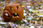 clever-pumpkin-carving-ideas-800x532