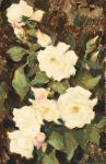 Nicolae Tonitza - Trandafiri albi