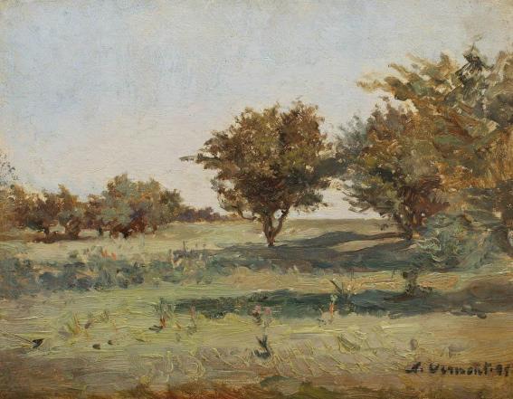 Nicolae Vermont - Zi de vară