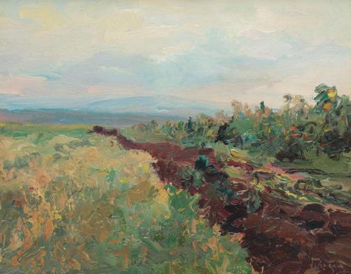 Arthur  Verona - Drum de ţară