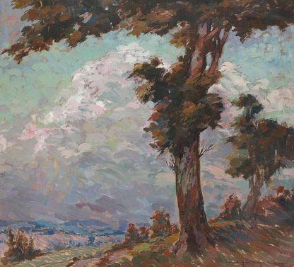 Marin H. Georgescu - Goruni